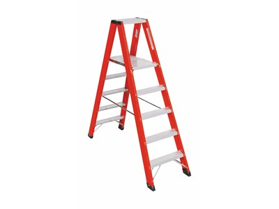 Double ladder with platform