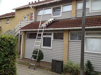 Stairs for eaves